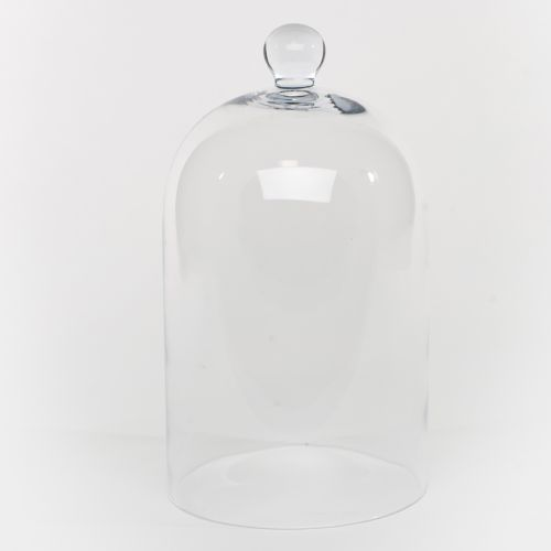Clear Medium Glass Dome